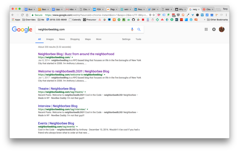 Screenshot of Google Search Results for Neighborbeeblog.com